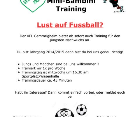Fussball – Mini-Bambini Training