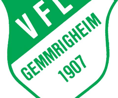 VfL Gemmrigheim bietet Unterstützung an