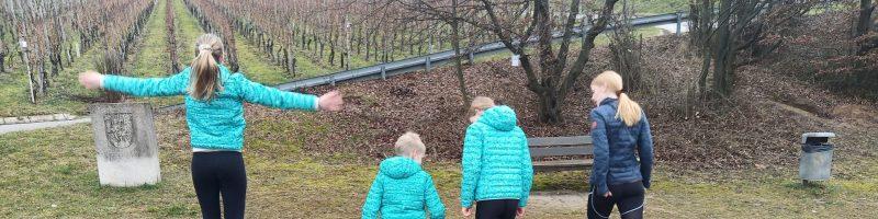 Lockdown-Leichti rund um Gemmrigheim
